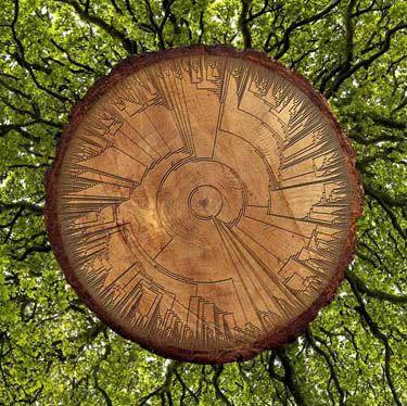 Carol Ballenger - Tree of Life, homage to Darwin