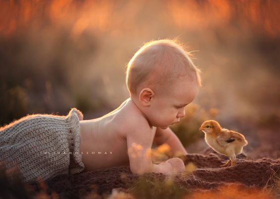 Spring Babies by Lisa Holloway 200mm