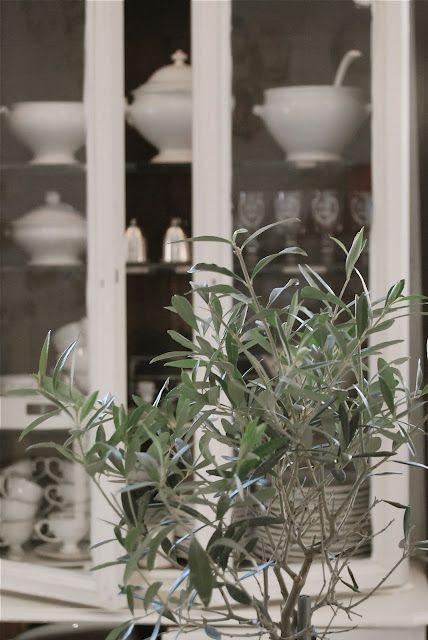 Op zoek naar een mooie servieskast voro al je pronkstukken? Kijk bij www.old-basics.nl voor unieke oude brocante kasten of laat een kast op maat maken in echte oude stijl!