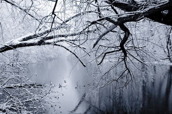Google Image Result for http://www.deviantart.com/download/145931957/winter_wonderland_by_Alesana_x_Fan.jpg