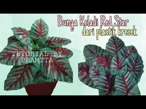 Diy Cara Membuat Bunga Keladi Red Star Dari Plastik Kresek How To