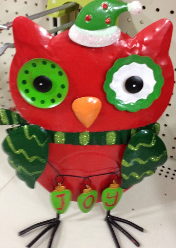 Robin red breast owl!