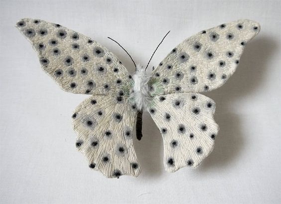 水玉模様の蝶