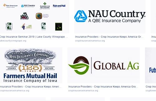 2019 Crop Insurance Companies Near Me Insurance Providers 2019