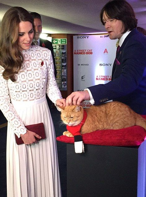 The duchess wearing her hair loose and an enamelled poppy on the bodice of her dress, shrugged off the incident as she met the stars of the film, most notably the eponymous ginger moggy, Bob: