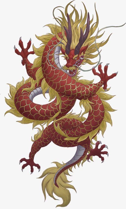 Dragon Chinese Dragon Art Dragon Artwork Dragon Drawing