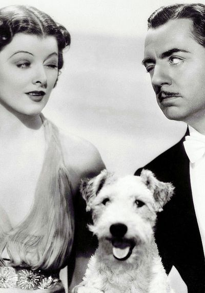 "Myrna Loy , William Powell and ""Asta"" The Thin Man series. I love watching this with my kid. Nora Charles makes one of the best first entrances ever."