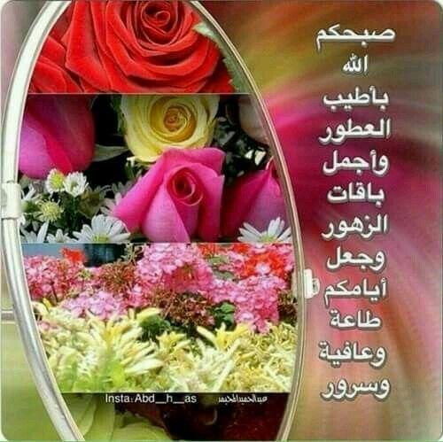 صباح النور والسرور والورد المنثور Morning Greeting Morning Greetings Quotes Morning Images