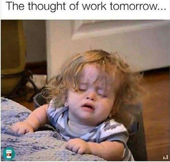 Pin By Peggy Silveira On Daily For Deb Funny Coworker Memes Work Jokes Work Humor