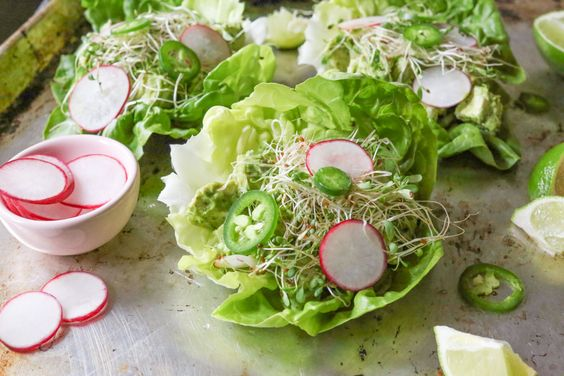 avocado-chicken-salad-lettuce-wraps-6