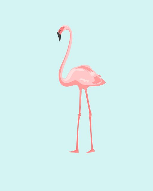 Post decorativo para imprimir flamingo tumblr