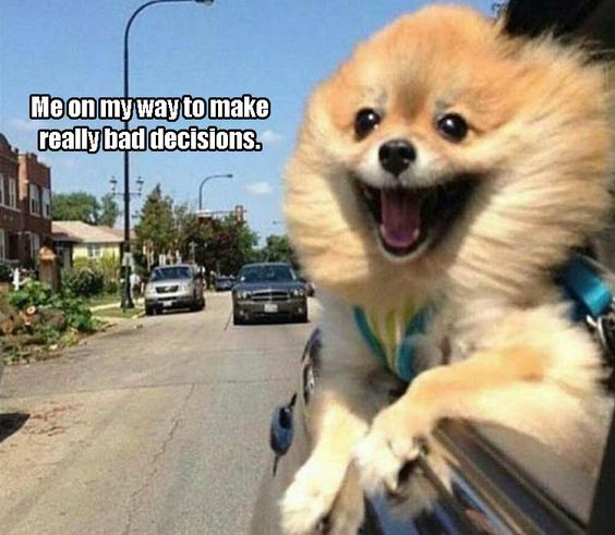 Funny Pictures Of The Day – 34 Pics: