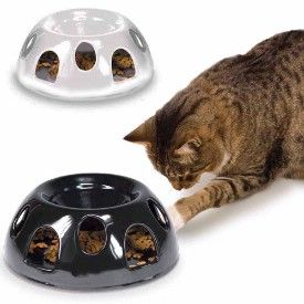 make your cat work for his/her food