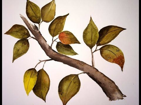 How To Paint Leaves On A Tree Branch With Watercolor Beginners