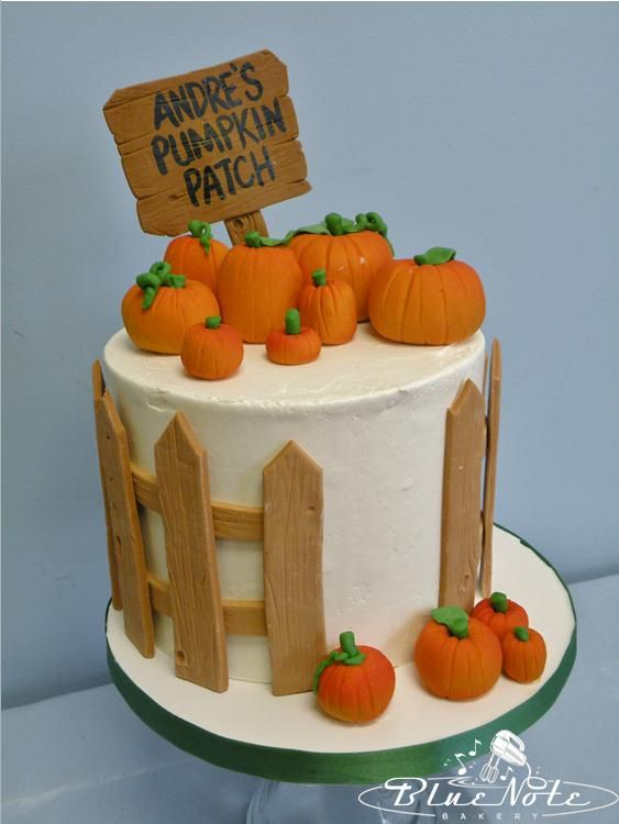 1st birthday pumpkin patch birthday cake cake pumpkin fall cake | Blue Note Bakery - Austin, Texas