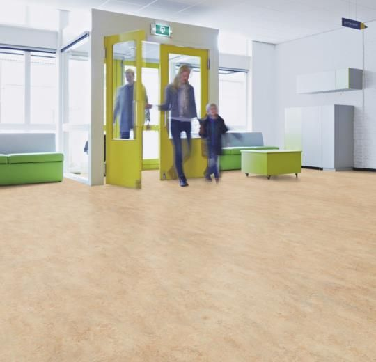 Forbo Marmoleum Click Cinch Loc Floating Floor Square Tiles Greenhome Solutions Marmoleum Floating Floor Marmoleum Floors