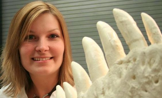 T. rex's killer smile revealed. -- Miriam Reichel's research shows that the T-Rex's front teeth gripped and pulled while the teeth along the side of the jaw punctured and tore flesh. ---- | Geology Page