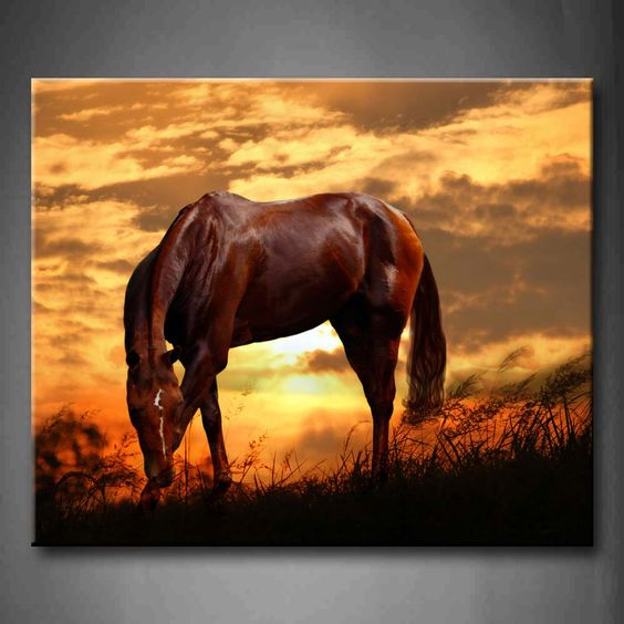 horse painting - Google-søgning