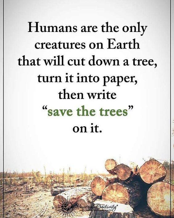 """""""Save the trees"""" #powerofpositivity"""