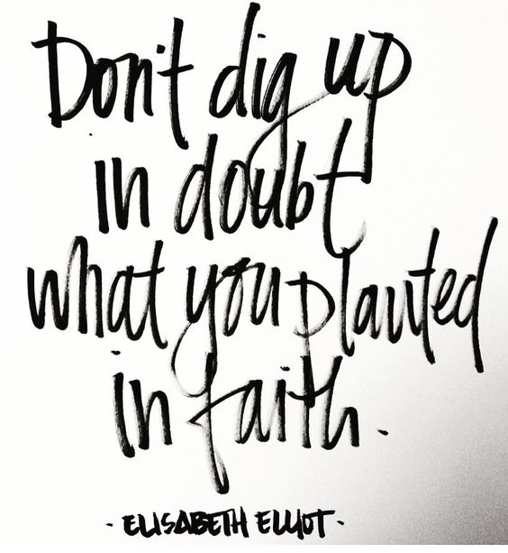 Truth !! Don't dig up in doubt what you planted in faith! #thehappylife #persuepretty #thatsdarling #smallbiz #marketing #branding #mycreativebiz #creativeadventures #creativepreneur #solopreneur by niccijohnson247