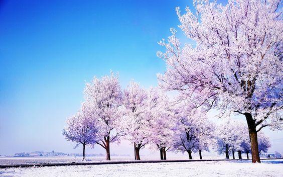 http://www.biszantzconnection.com/wp-content/uploads/2015/12/winter-landscape-hd.jpg