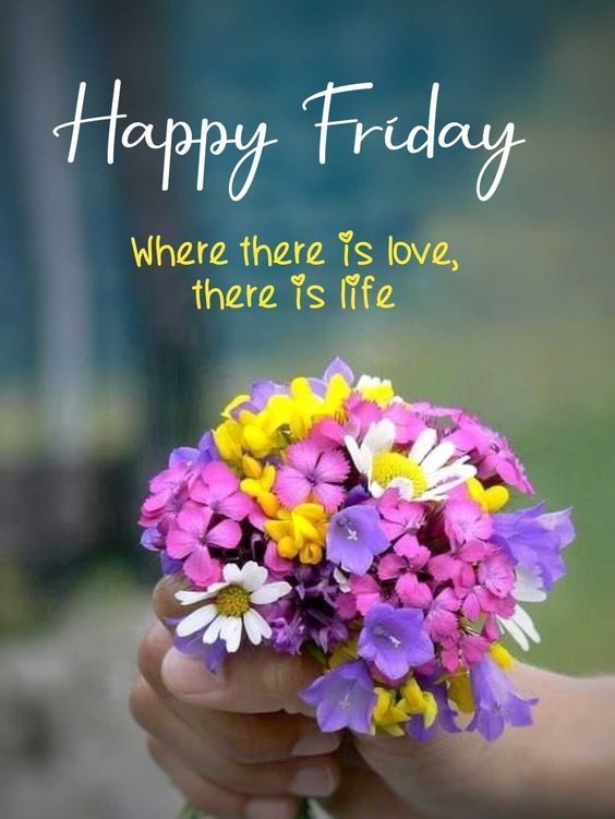 good morning - happy friday