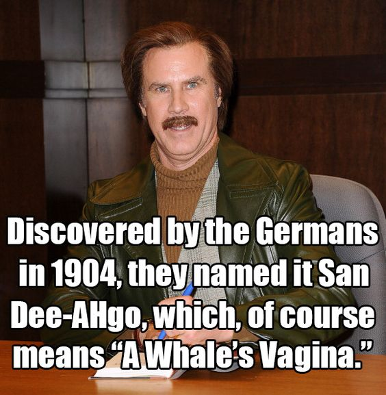 Ron Burgundy in Anchorman: The Legend of Ron Burgundy, 2004 | 13 Will Ferrell One-Liners We All Know And Love