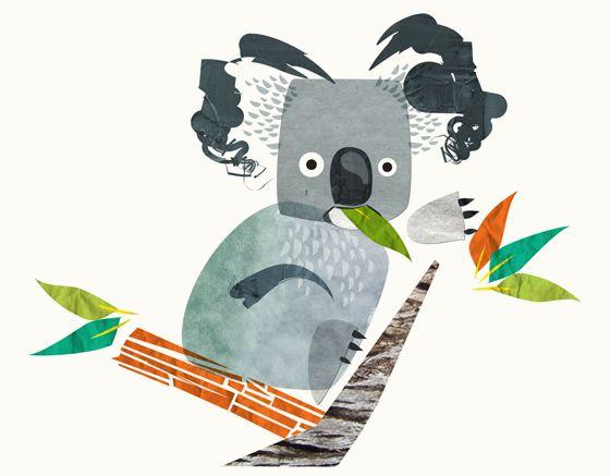 Surprised koala illlstration for wine labels - Leanne Bock. Australian / art / design.