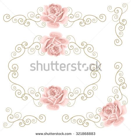 Beautiful isolated roses and curly calligraphy elements on the white background. Set of floral design elements. Vector illustration - stock vector