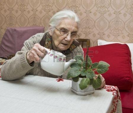 Mujer europea regando las flores en el hogar.
