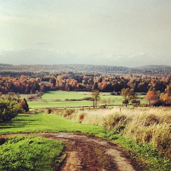I took this photo when I went apple picking at Chapin Orchards of Essex Junction, VT