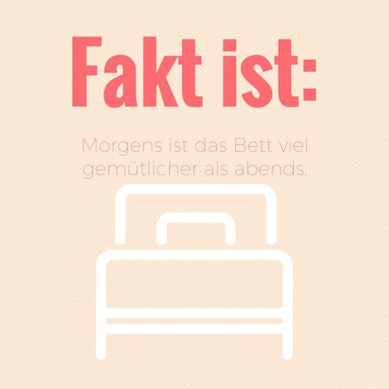 Fakt ist: Morgens ist das Bett viel gemütlicher als abends. Librileo.de