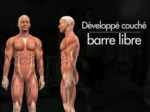 Prise De Muscle Sec Un Programme De Musculation Complet Programme Musculation Programme De Musculation Complet Musculation Pour Débutant