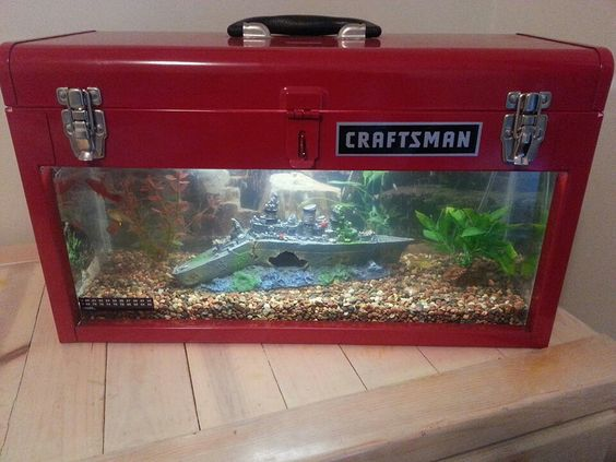 Man Cave Tank : Awesome fish tank repurpose upscale create pinterest