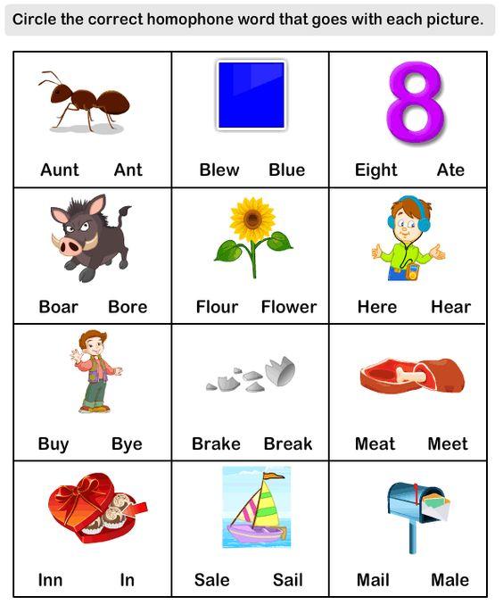 eslefl Worksheets kindergarten Worksheets Homophone Word – Esl Worksheets for Kindergarten