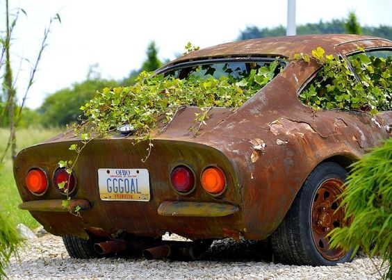6 Ways To Remove Rust From Any Surface The Healthy And Natural Way How To Remove Rust Rust Car