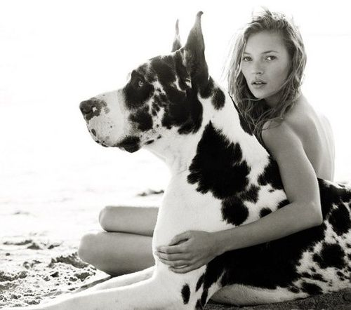 Allure May 1994 Kate Moss By Sante D Orazio Hugs And Cuddles Great Dane