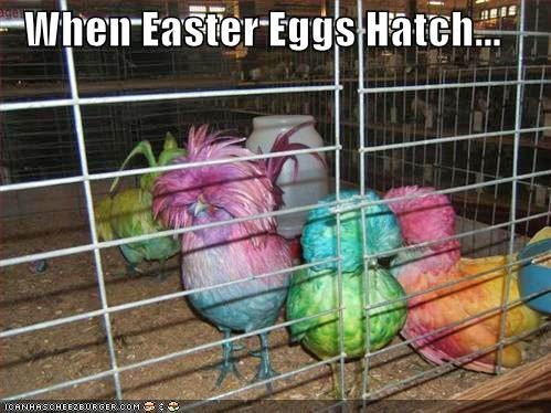 When easter eggs hatch.