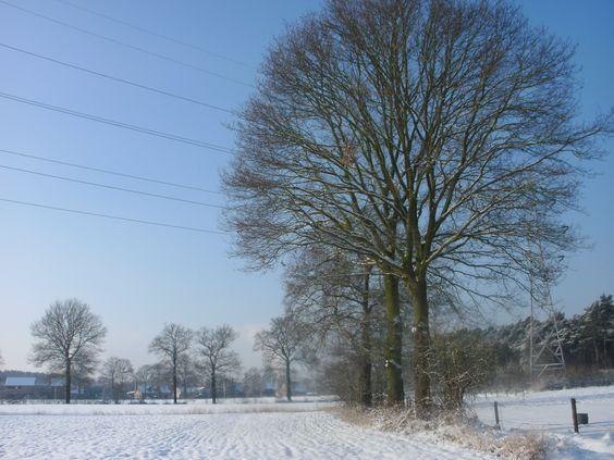 Winter 2013 Belgie