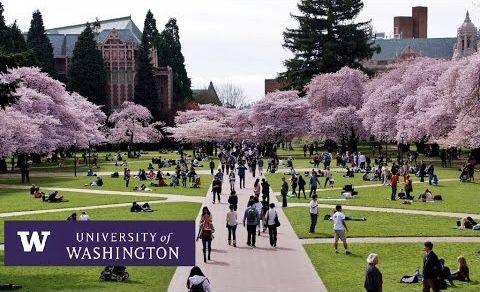 University Of Washington Seattle Campus College Campus