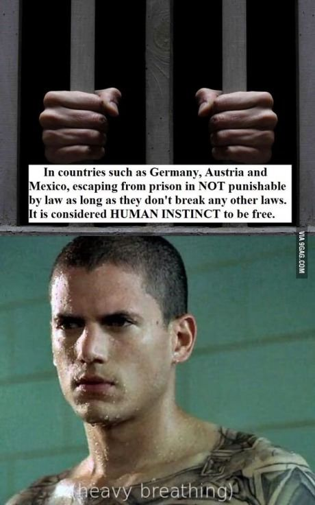 This guy gets it Fans, Prison and Prison break