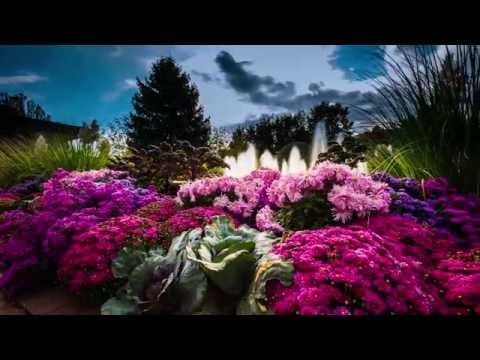 Chicago and Its Botanic Garden | Chicago Botanic Garden