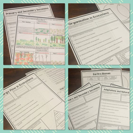 7th grade science homework help