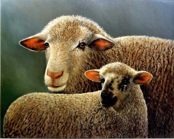 Sheep painting by Doug Lehnhardt