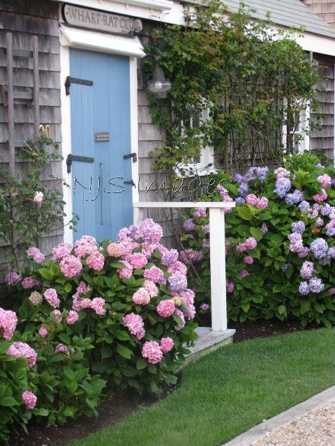 Hydrangea Cottage Nantucket
