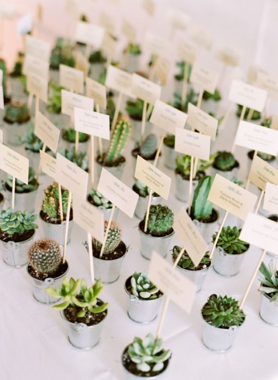 Inspirational Succulent Wedding Table Place Cards:
