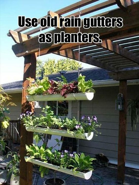 Old rain gutters for planters