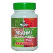Brahmi  (Herpestis monniera, sin. Bacopa monniera)