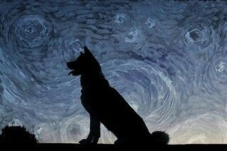 Van gough dog