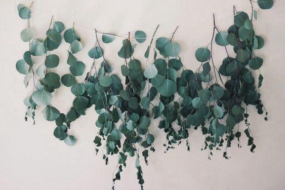 Eucalyptus Garland | The Happy Hunters / Plant Medicine <3